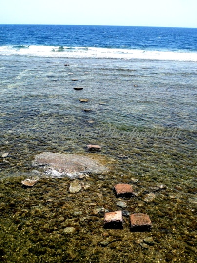 """Stepping Stones"" in the Red Sea"